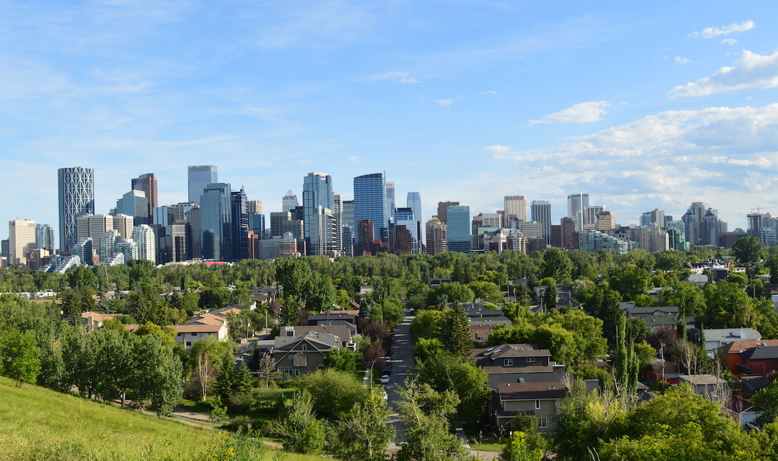 Calgary Plans To Double Its Urban Forest The Sprawl